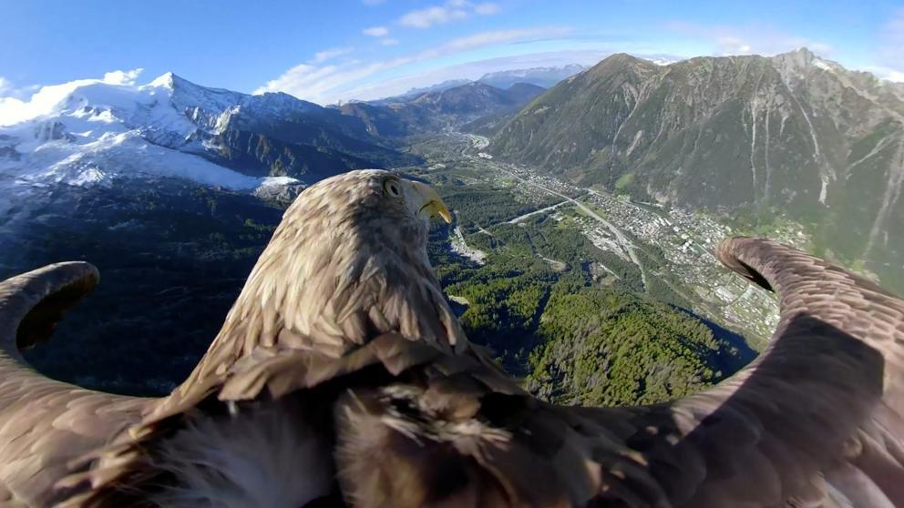 Los Alpes a vista de águila