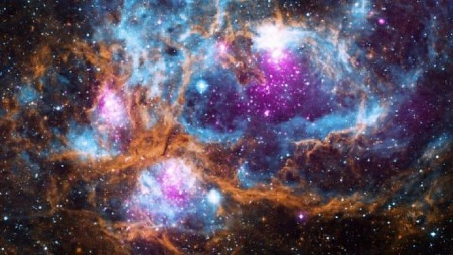 La evolución nos dice que es probable que seamos la única vida inteligente del universo