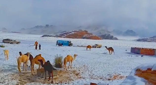 Inusual tormenta de nieve sobre el desierto de Arabia Saudita
