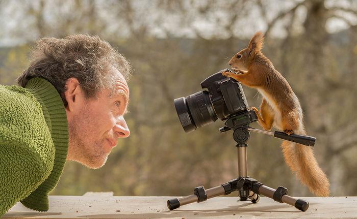 Este fotógrafo ha estado retratando ardillas durante seis años. Aquí están treinta de sus mejores fotos