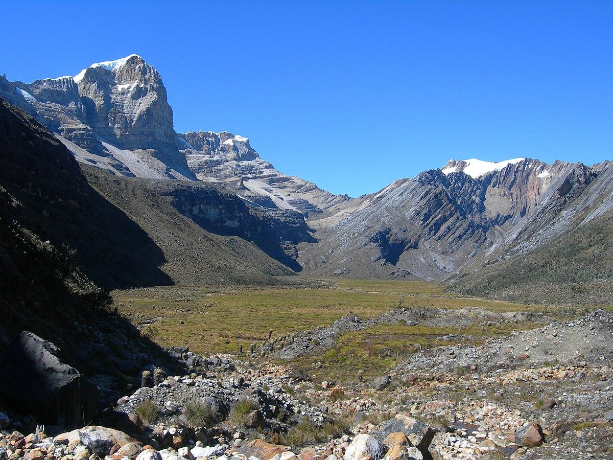 Descubre una nueva especie a 3500 m en las montañas colombianas